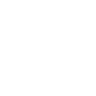 security limitation icon